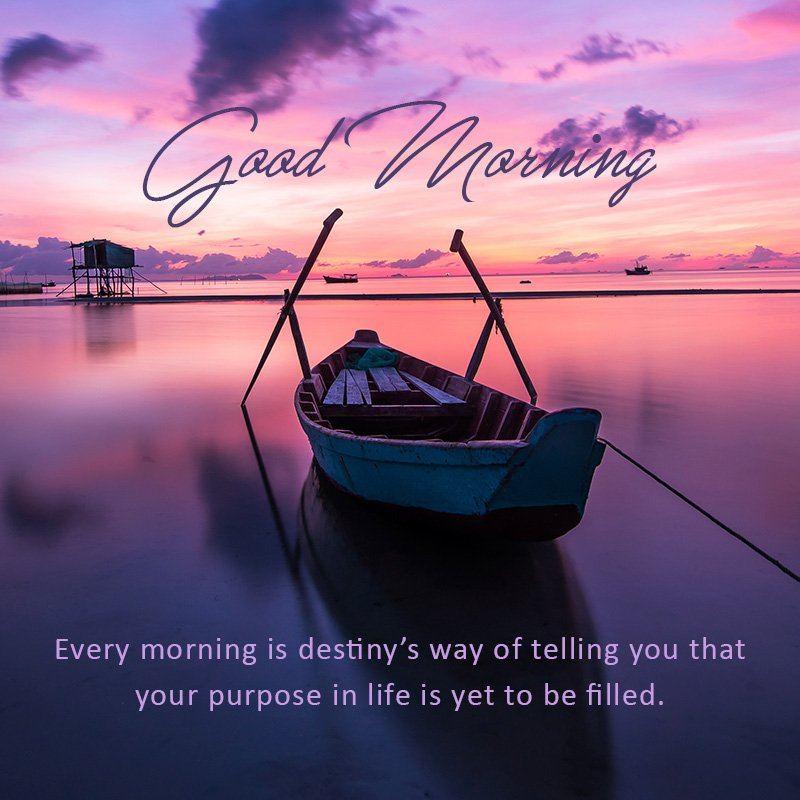 Wishes about purpose of life