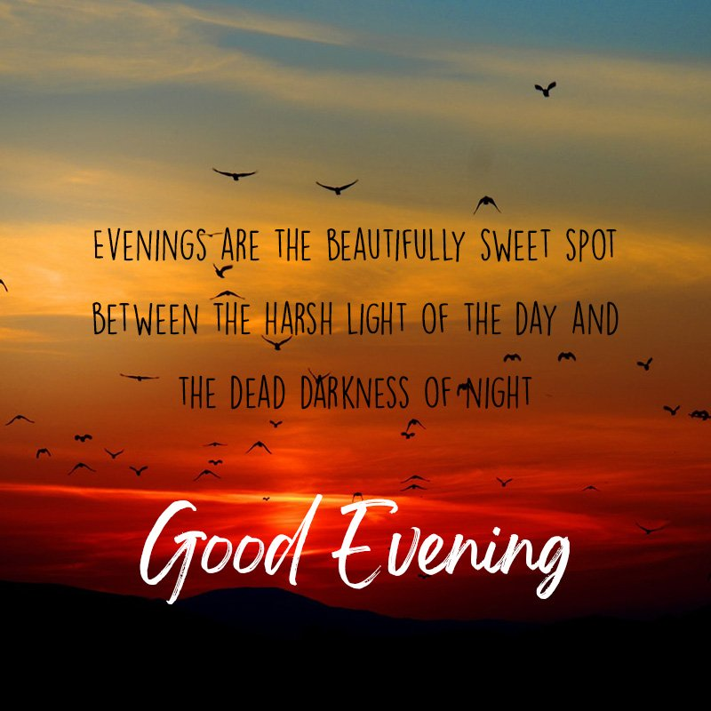 Evenings are the beautifully sweet spot